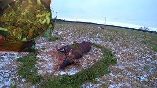 Охота #213 закрытие сезона на лося