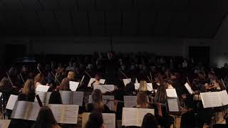 A. Dvorak -  8 symphony, 2nd movement (Adam Adamovic & JVLMA symphony orchestra)