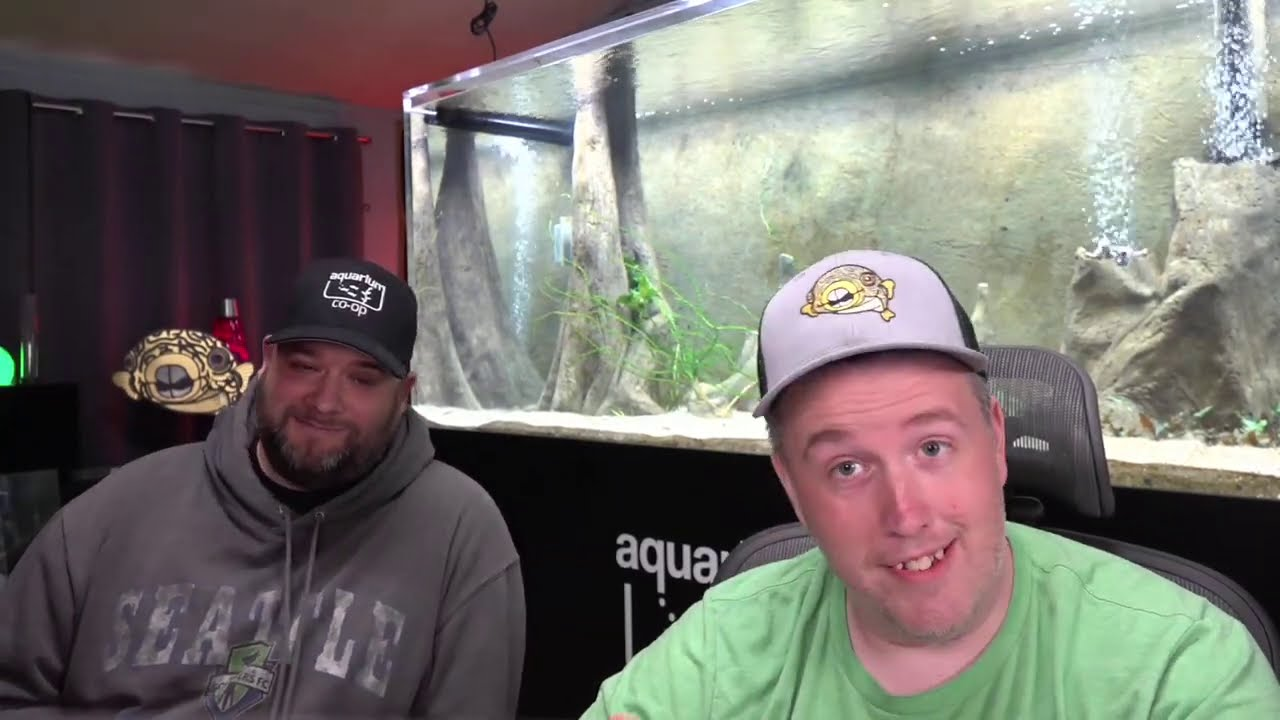 Live with Steenfott Aquatics