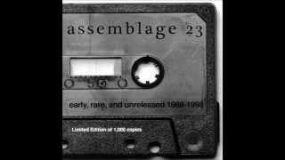 Assemblage 23 - Sometimes I Wish I Was Dead (lyrics)