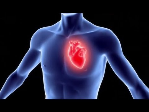 Heart & Vascular Center Video - Brigham and Women