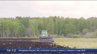 Сегодня начались отборочные туры пятого открытого Чемпионата России по пАхоте.