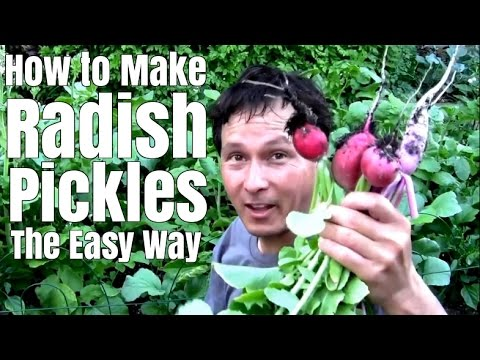 How to Make Radish Pickles the Easy Way