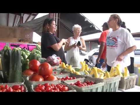 Around Town on JTA - Jacksonville Farmer's Market