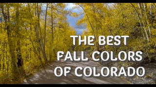 Best Places to see the Autumn colors in Colorado