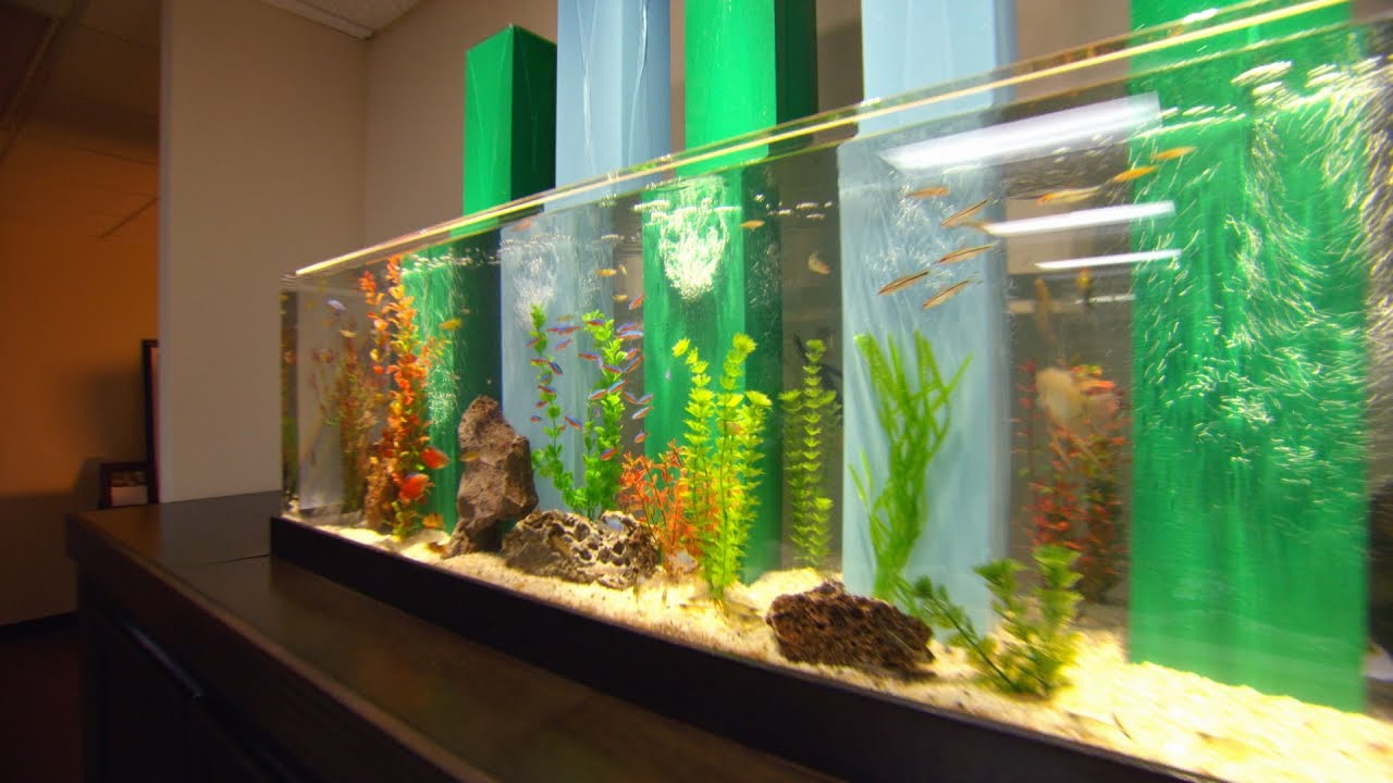 Bill engvall gets tanked youtube for Atm fish tank
