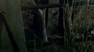 Human Beasts Trailer
