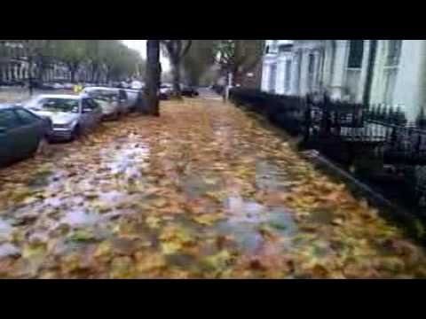 Autumn on Warwick Avenue, London