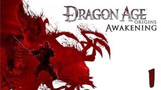 видео Прохождение Dragon Age: Awakening