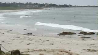 asilomar beach #3, pacific grove - pebble beach, monterey county, california