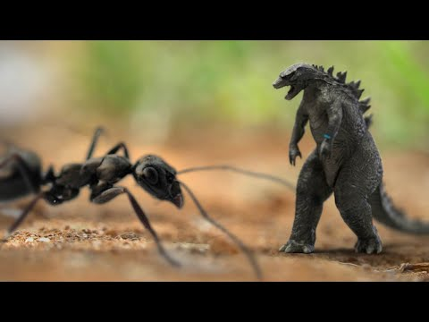 Micro-Godzilla: King of the Insects