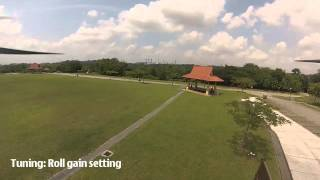 Onboard Cam: APM2.5 AC3.1 rc5 Autotune ride on 800mm Quadcopter