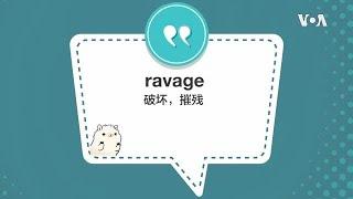 学个词 - ravage