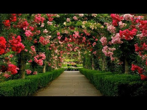 The Most Beautiful Gardens In Europe