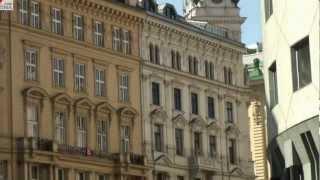 Обучение в Австрии: высшее образование в Вене