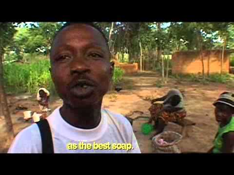 Sierra Leone's Refugee All Stars - Sierra Leone's Refugee All Stars - The Story Behind the Song