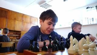 видео школа шахмат для взрослых