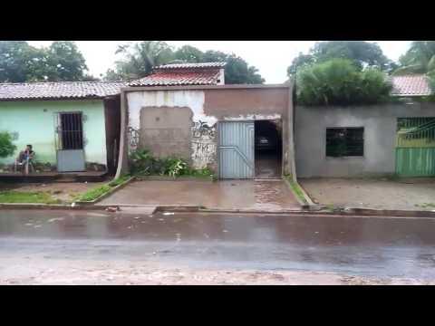 gameleira cajari ma