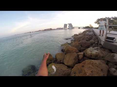 Fishing For Pompano At John's Pass