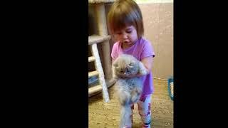 Ребенок нянчит котят.