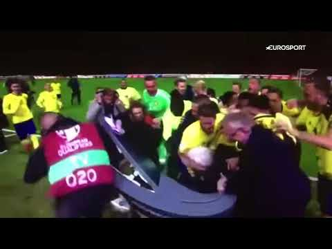 Sweden players Mikael Lustig performs bizarre dance routine | Sweden Players Celebration