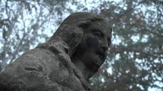 Tuchów we mgle - 22.10.2011