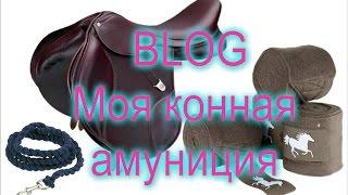 BLOG  Мои Конные вещи (моя конная сумка)
