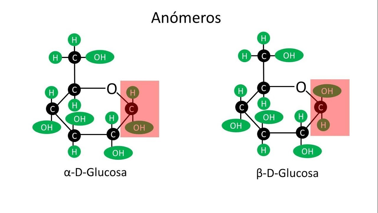 Descripcion de la molecula glucosa