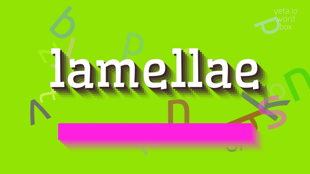 How To Say Lamellae High Quality Voices Youtube