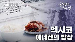 [한국인의밥상] 멕시코 에네켄의 밥상 | 밥이 조국이다 (Full VOD)