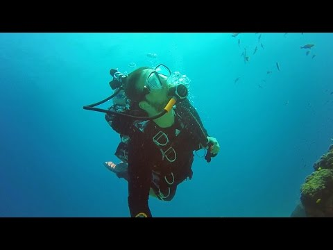 Ep. 10 Underwater Wonderland: Isla del Caño, Costa Rica - January 2016