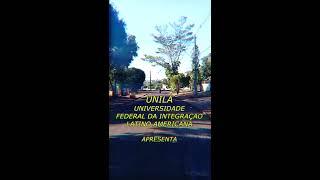 Entre Rodas - Vertical video arte