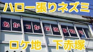 TBS金曜ドラマ ハロー張りネズミ ゴローとグレが所属する「あかつか探偵...