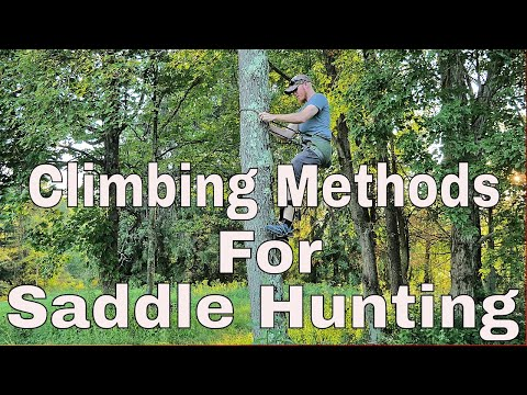 Climbing Methods For Saddle Hunting
