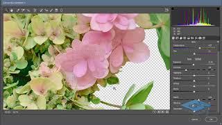 Делаем цветочную открытку в Фотошоп -1