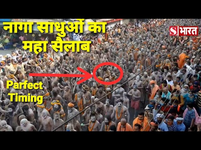 नागा साधुओं का महा सैलाब || Naga sadhu || Naga Baba ||