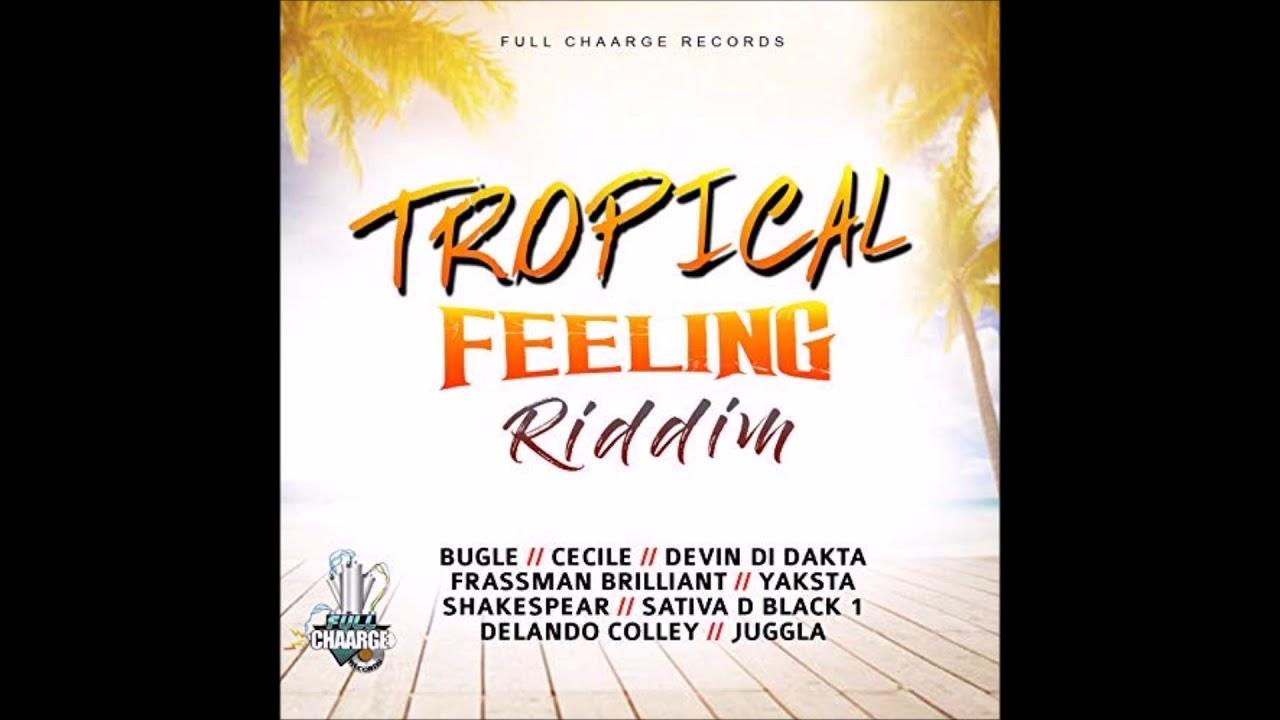 Download Frassman Brilliant - Brain Food [Tropical Feeling Riddim 2018]°•BrtH`Bluz [Burhay]