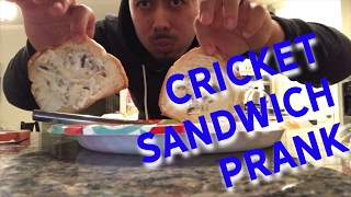 CRICKETS IN HER SANDWICH PRANK!