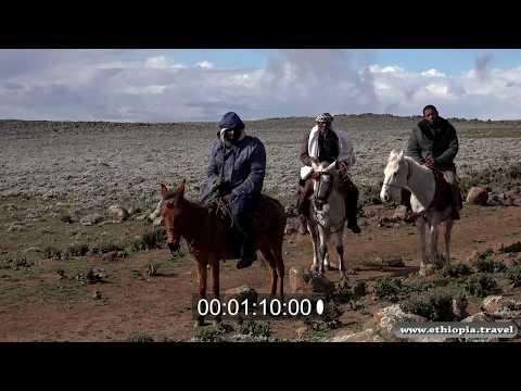 Ethiopia - Bale National Park Plateau (Part 1)
