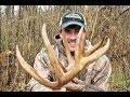 Late season 2013 10pt archery buck in Burgettstown, PA