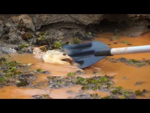 Brazil Vs. Big Mining In The Wake Of Dam Disaster