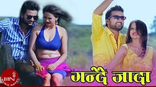 New Nepali Hot Song || GANDAI JAADA