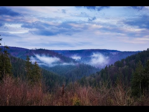 Harz 4K 2160p misty Timelapse Germany/Deutschland