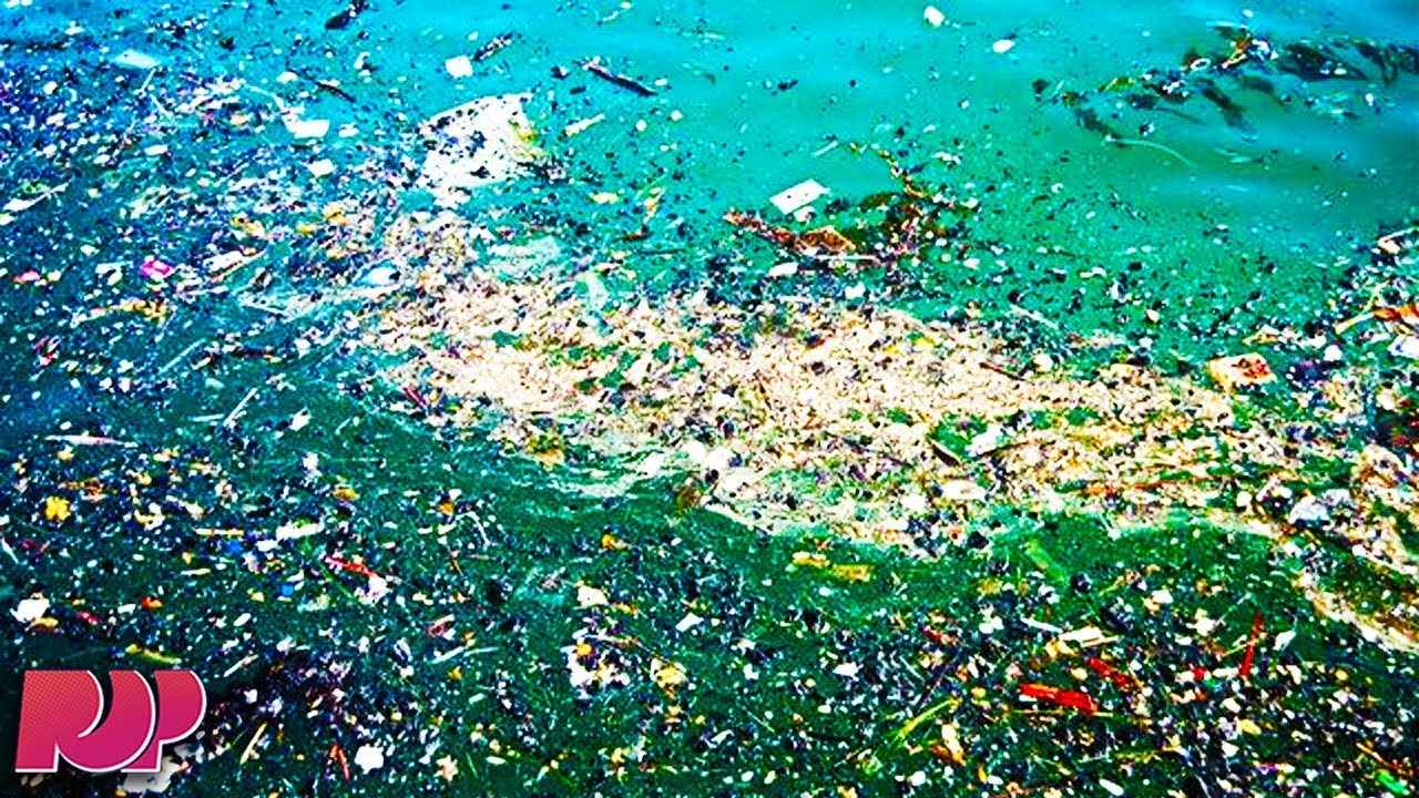 Floating Trash In Pacific Image Collections Diagram