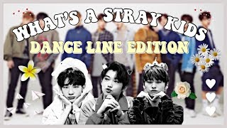 A VERY NECESSARY GUIDE TO » STRAY KIDS DANCE LINE