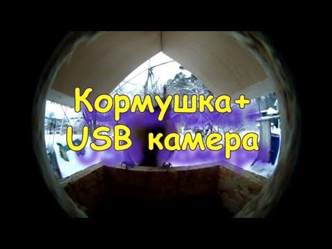 Как сделать кормушку для птиц с USB камерой