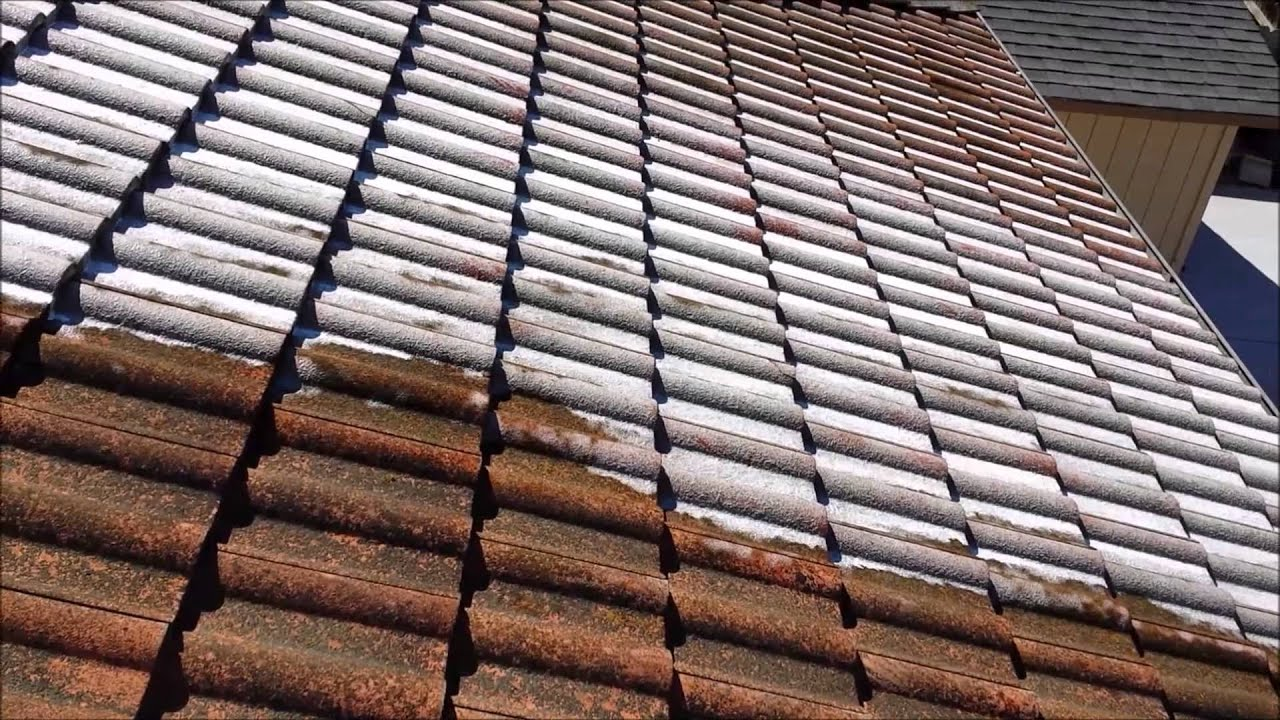 SoftWash Tile Roof Cleaning By Illuminate Palace Power Wash Services    YouTube