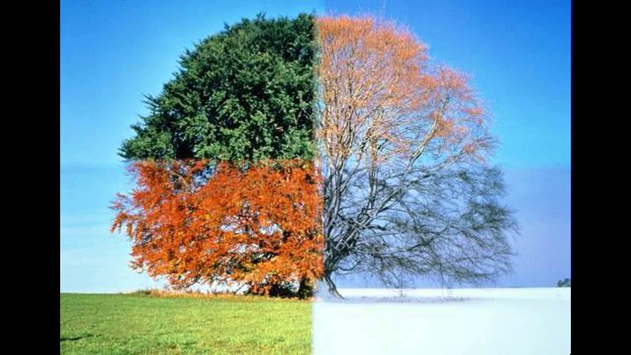 Seasons Change (cover)