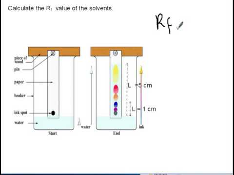 Criteria Of Purity And Chromatography Siba Learning Zone Youtube