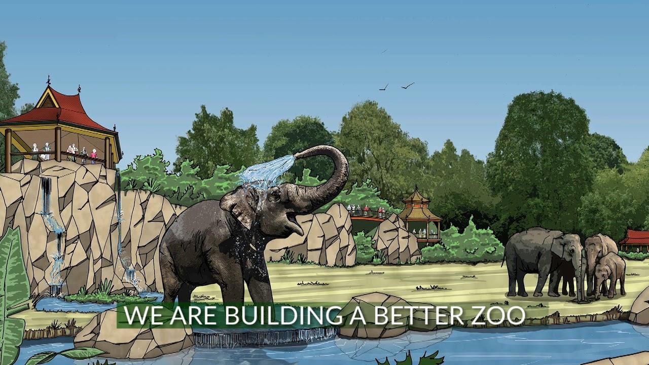 More Home to Roam - Cincinnati Zoo & Botanical Garden®